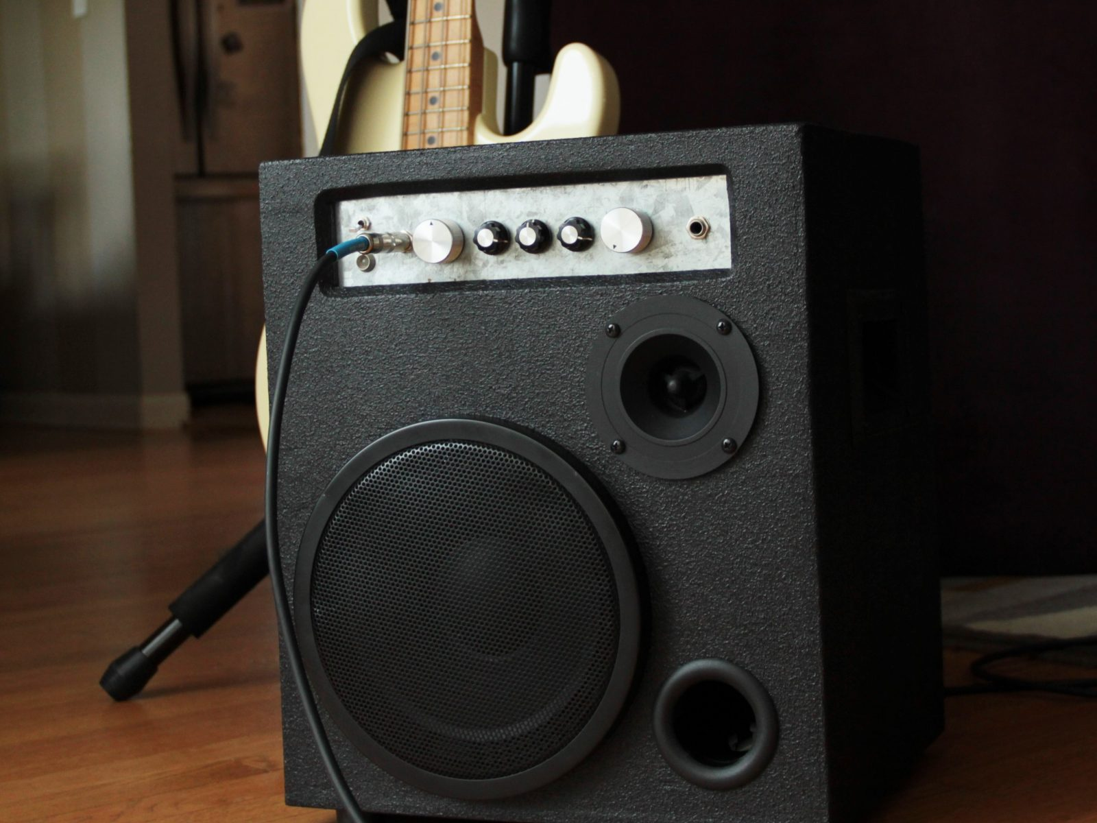 DIY Bass Amp PPA100 | The World of Wogg